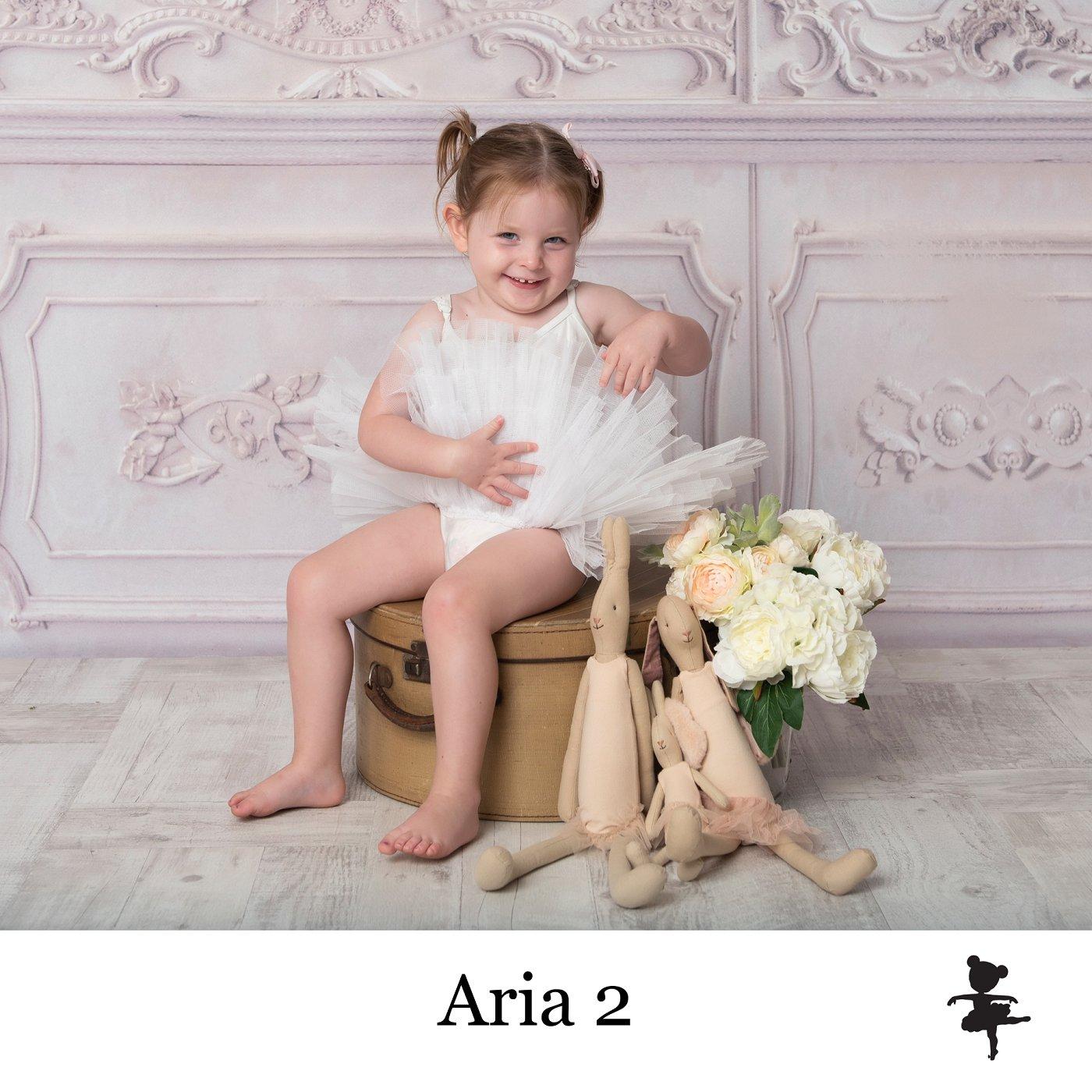 LB1719-Aria 2.jpg