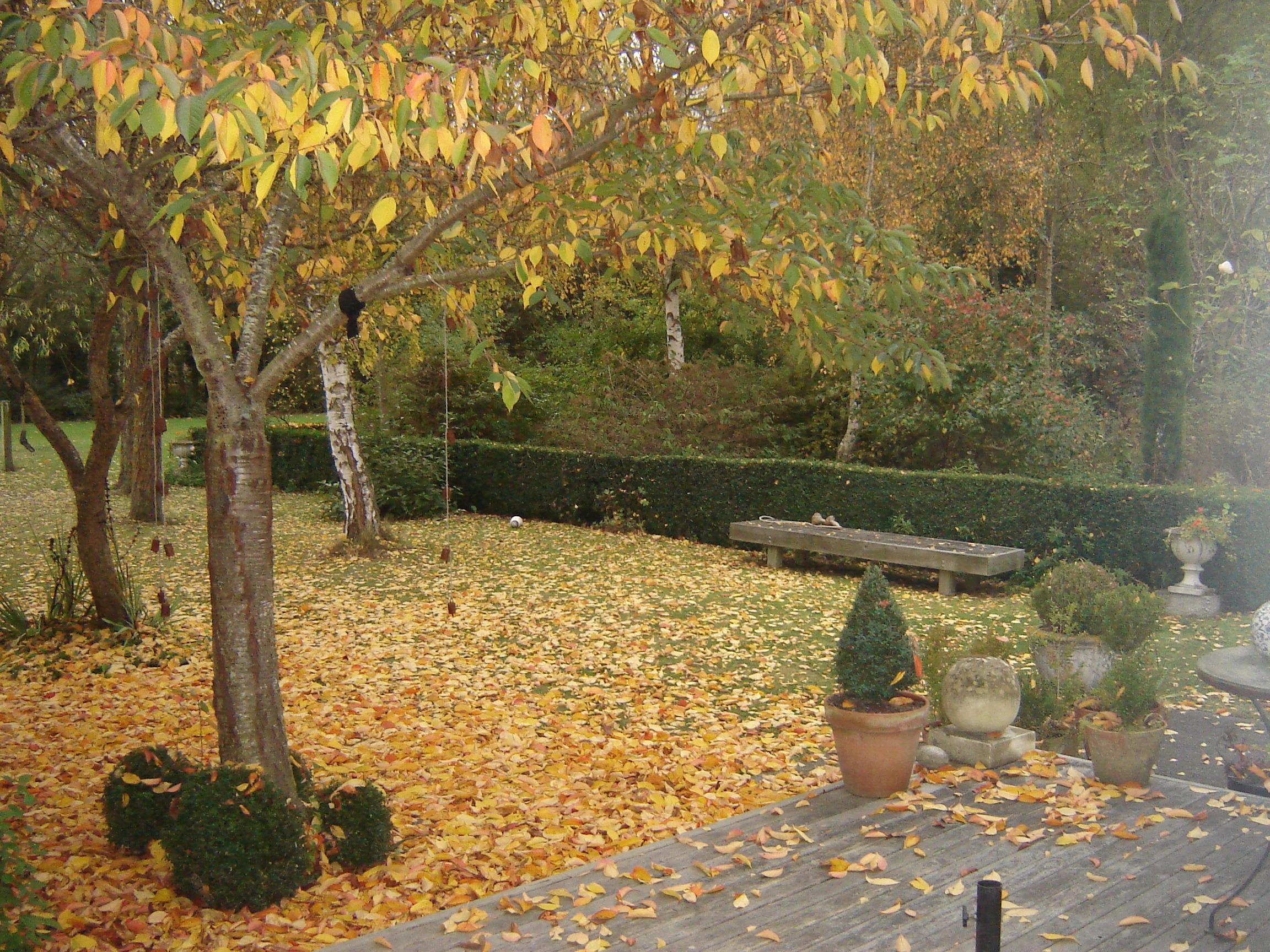 autumn 005.jpg