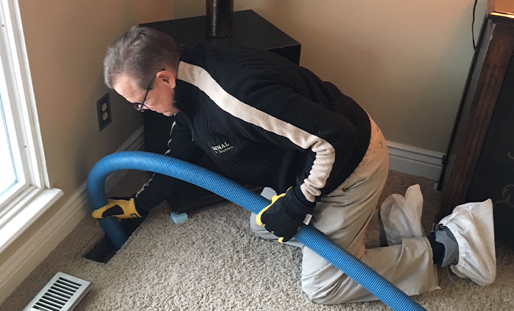 Air Duct Cleaning - Air quality in 19 out of 20 homes is considerably more polluted than the air found in most major cities.