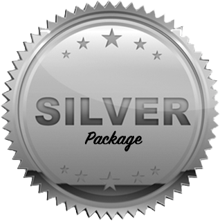 silver p.png