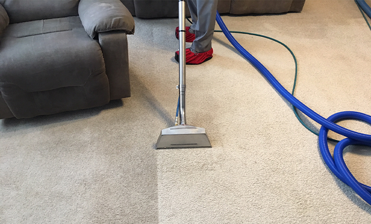 Carpet Cleaning & protection - Find out about our carpet cleaning service that is considered the best by many in all of St Louis, Missouri. Backed by our 100% Guarantee!
