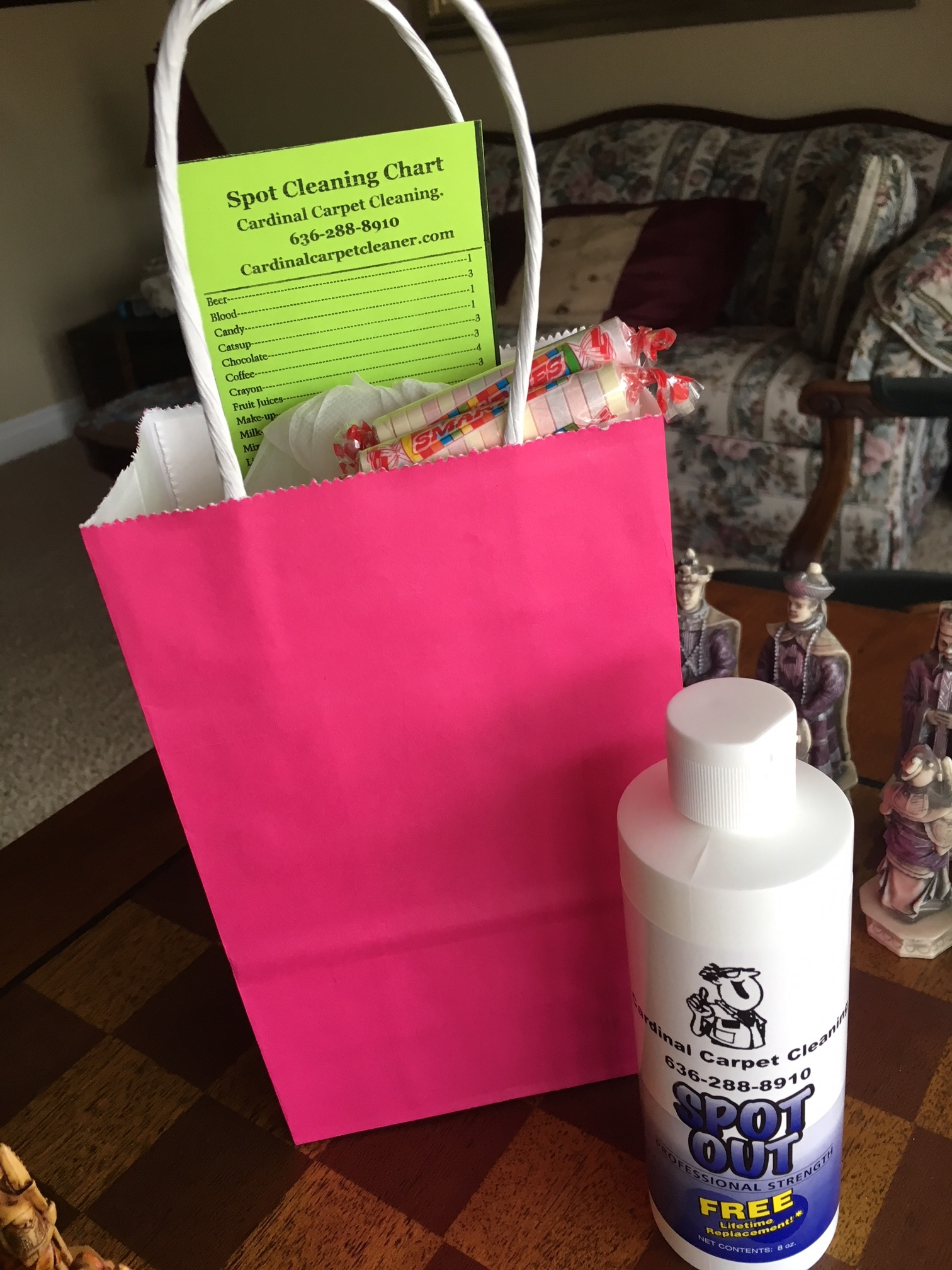 Spot Cleaning Gift Bag