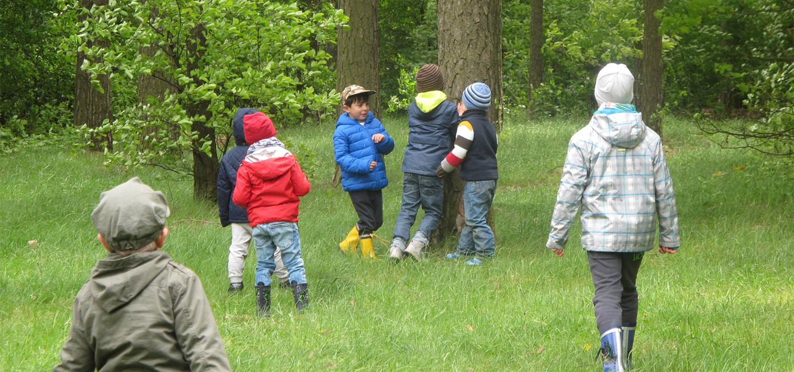 EKOLUDEK_Niepubliczne_przedszkole_ekologiczne_Lodz_Zabawa_w_lesie.jpg