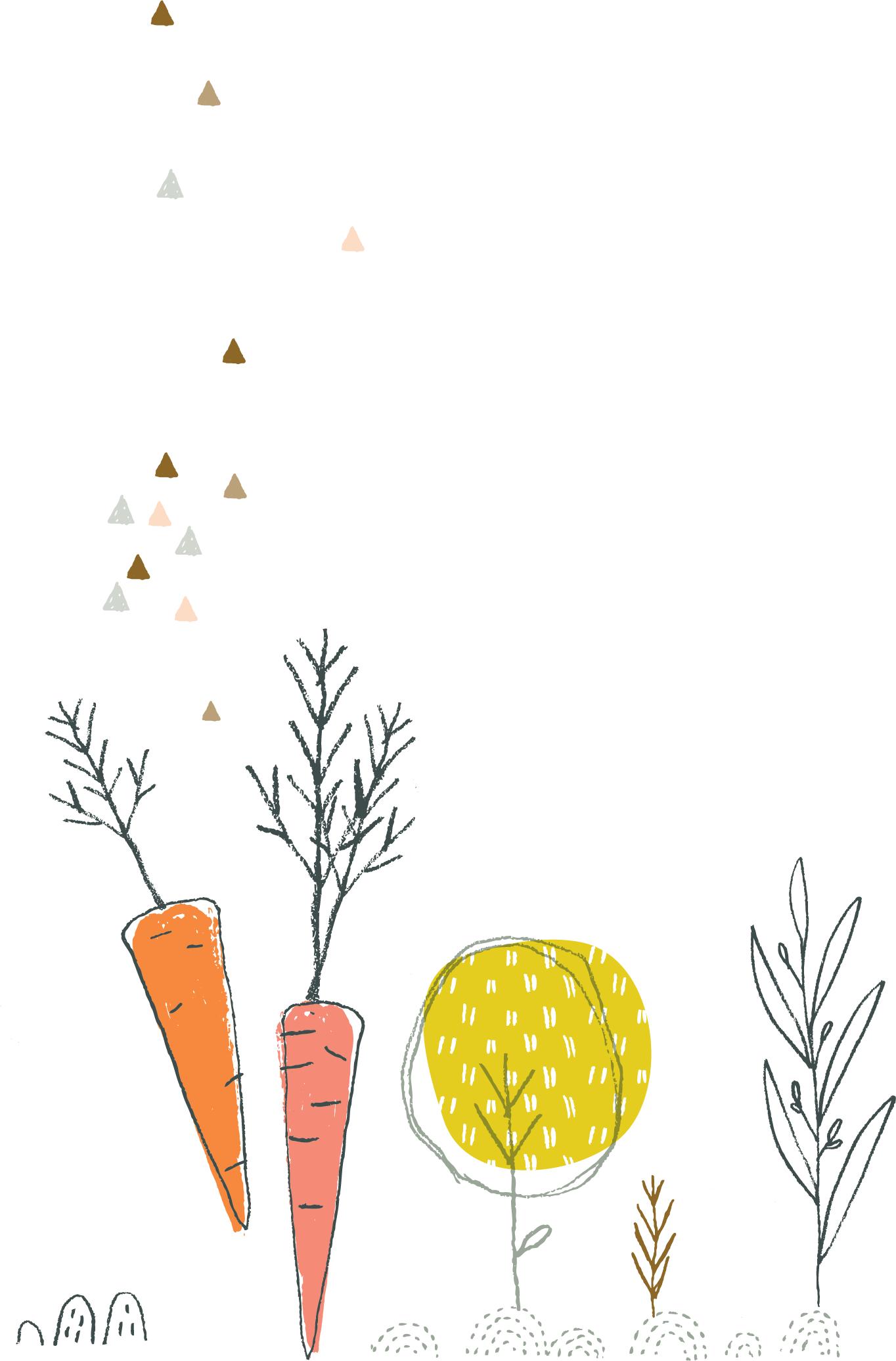 Carrots.png