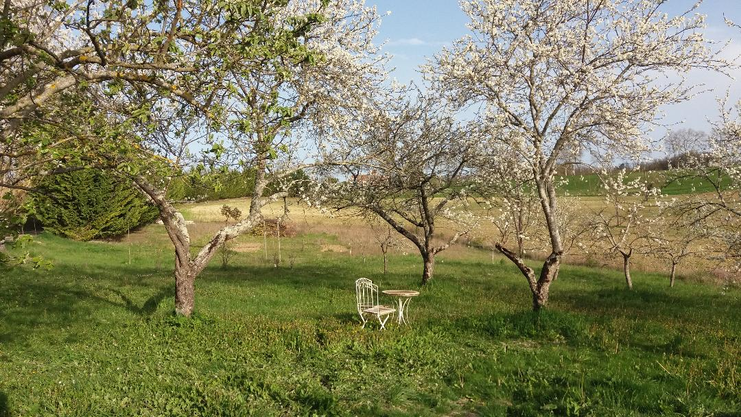 orchard-gite-southwest-france