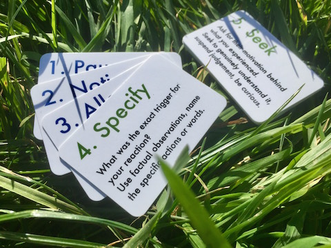 Fight-cards-grass-480.jpeg