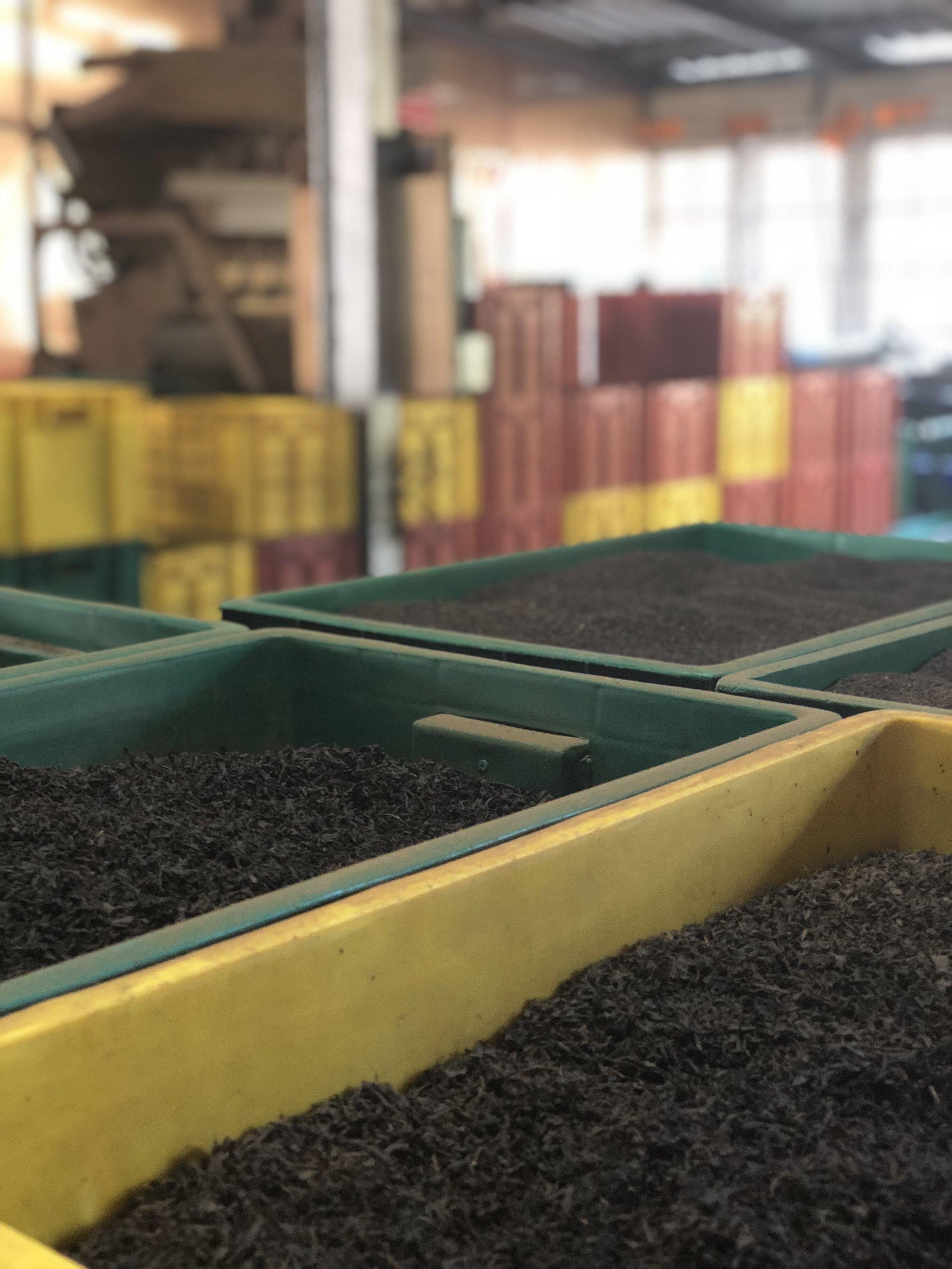 Tea-factory-Kandy-Sri-Lanka
