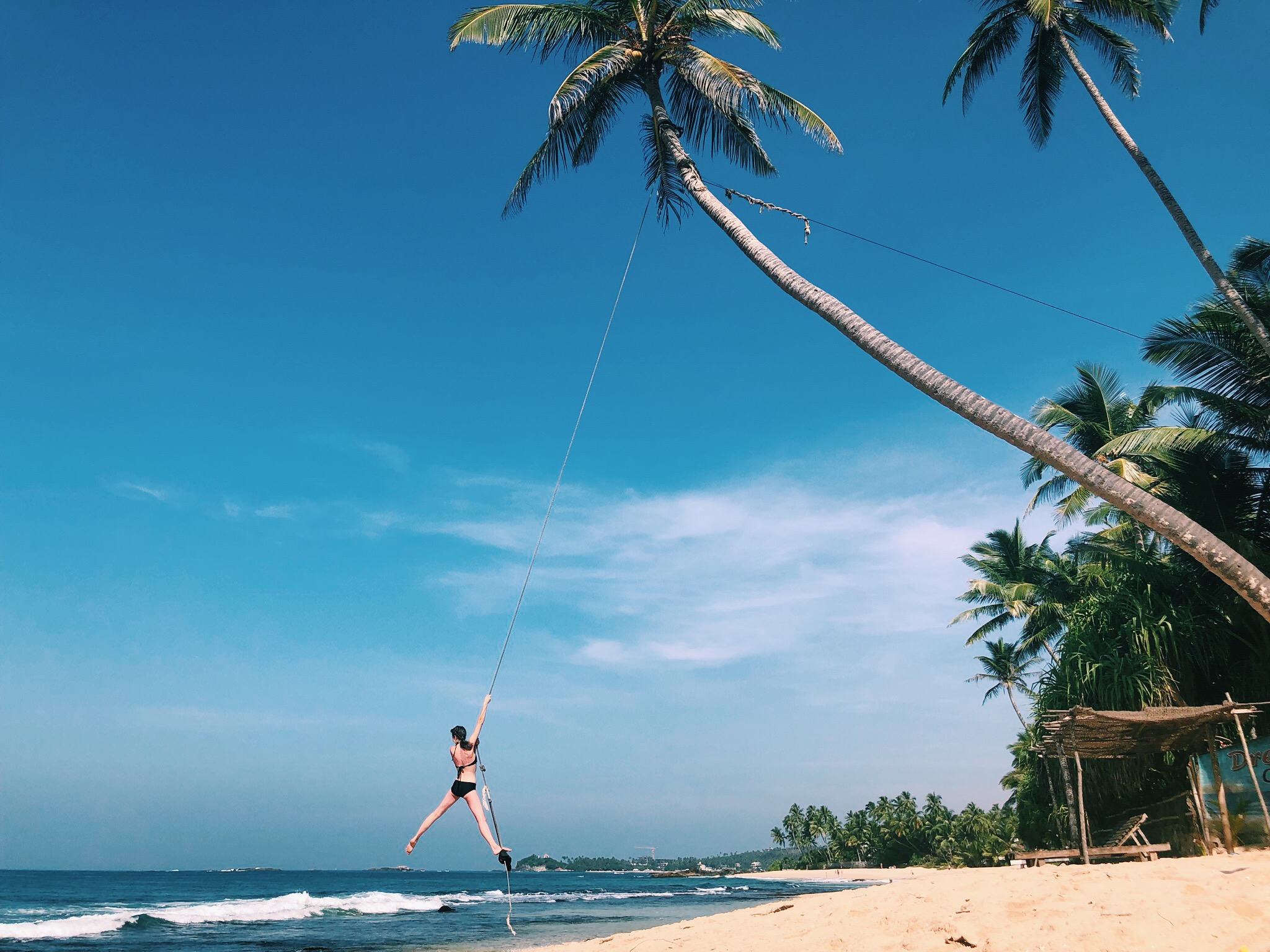 Palm-tree-swing-Sri-Lanka