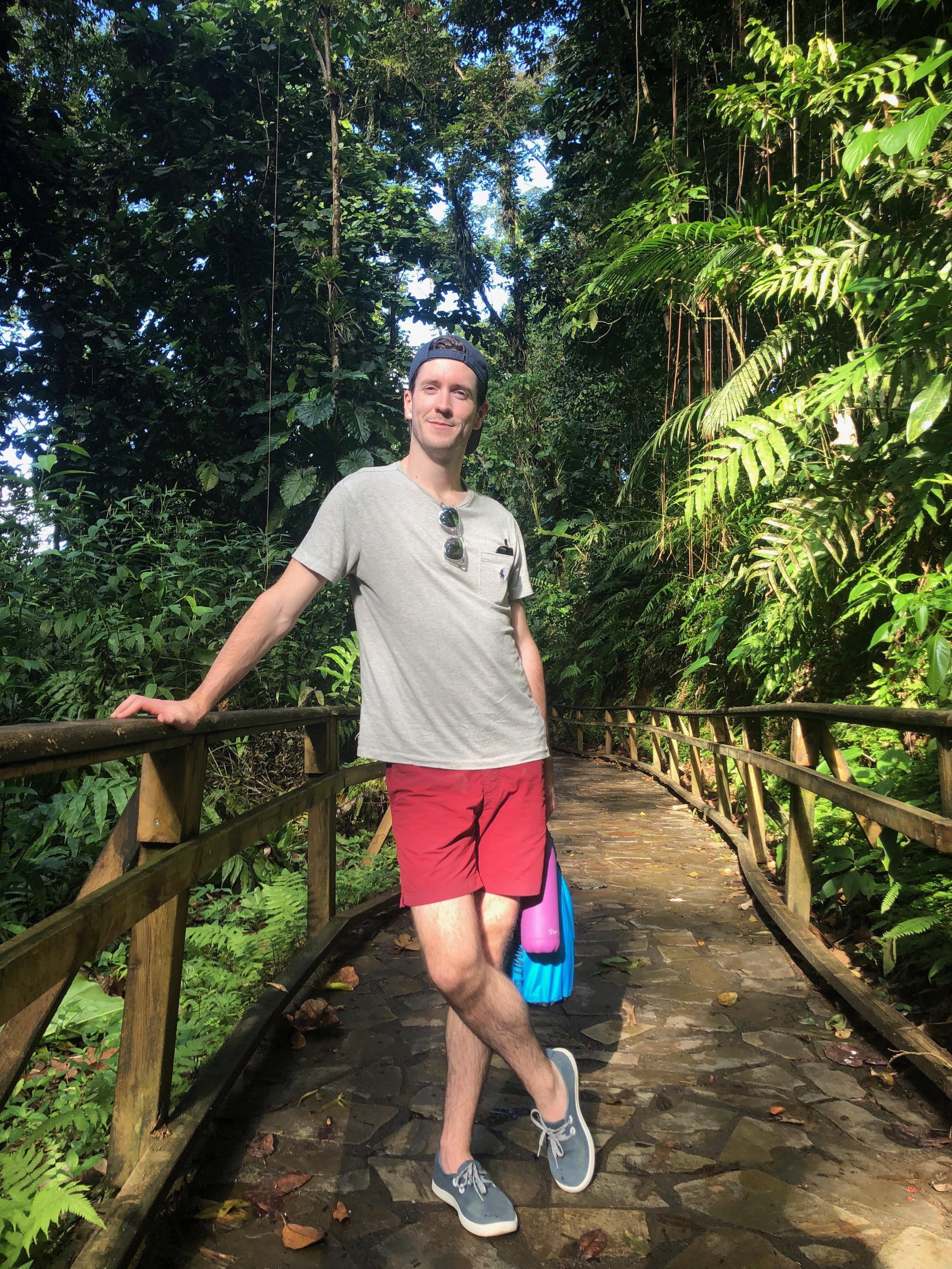 Hiking Jungle Guadeloupe Travel Adventure Activity