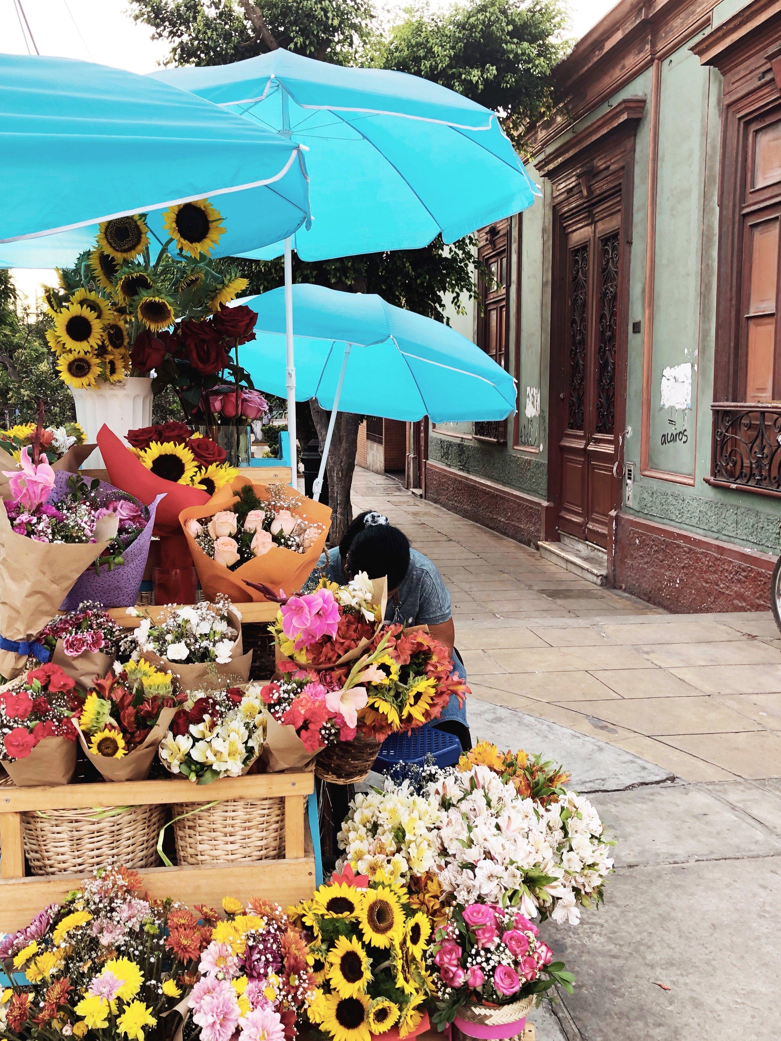 barranco-south america-lima-peru-flowers-travel tips