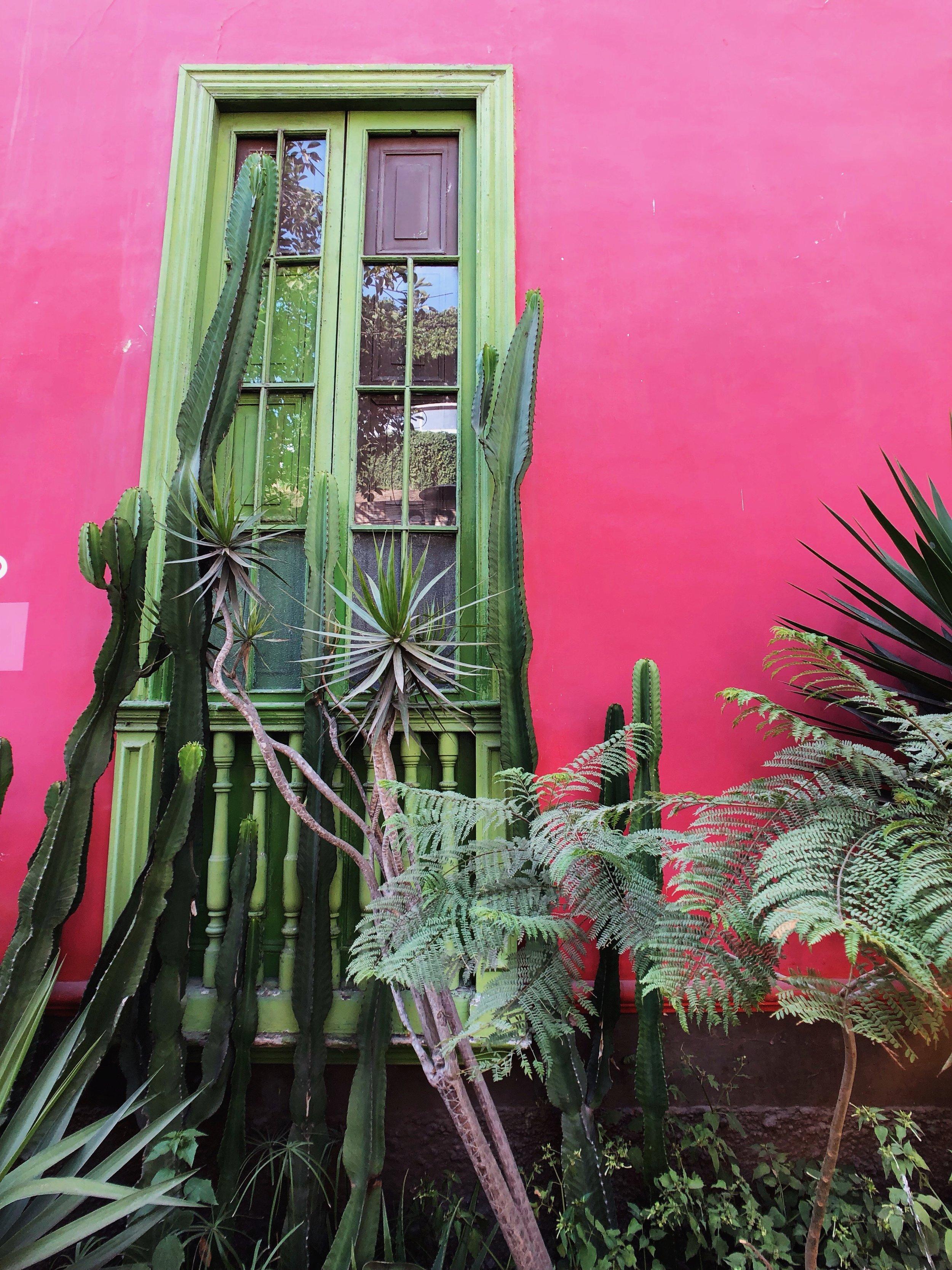 barranco-south america-lima-peru-bridge of sighs-travel tips-cactus