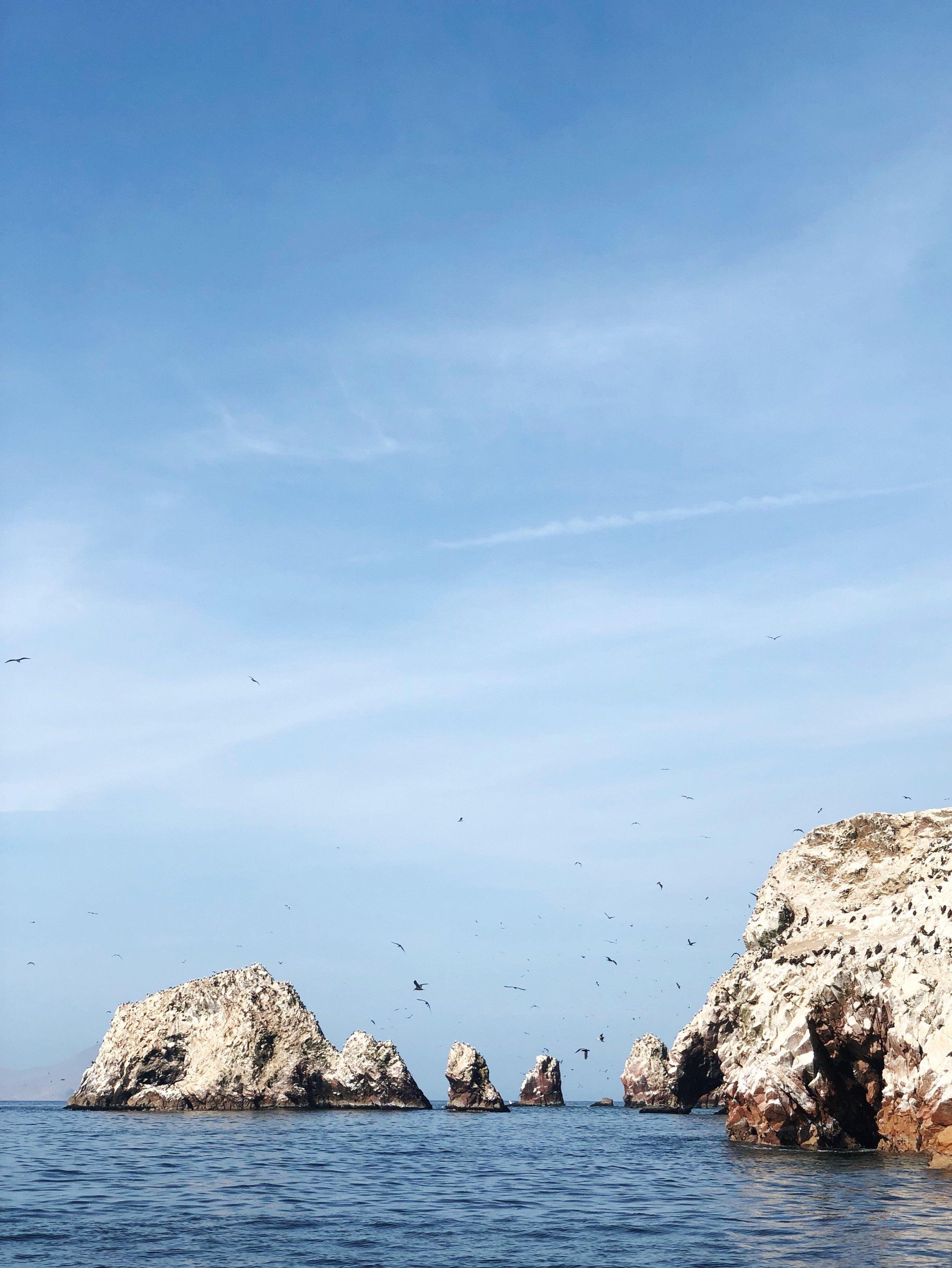 Ballestas Islands - paracas-peru - travel -tips - boat - south america
