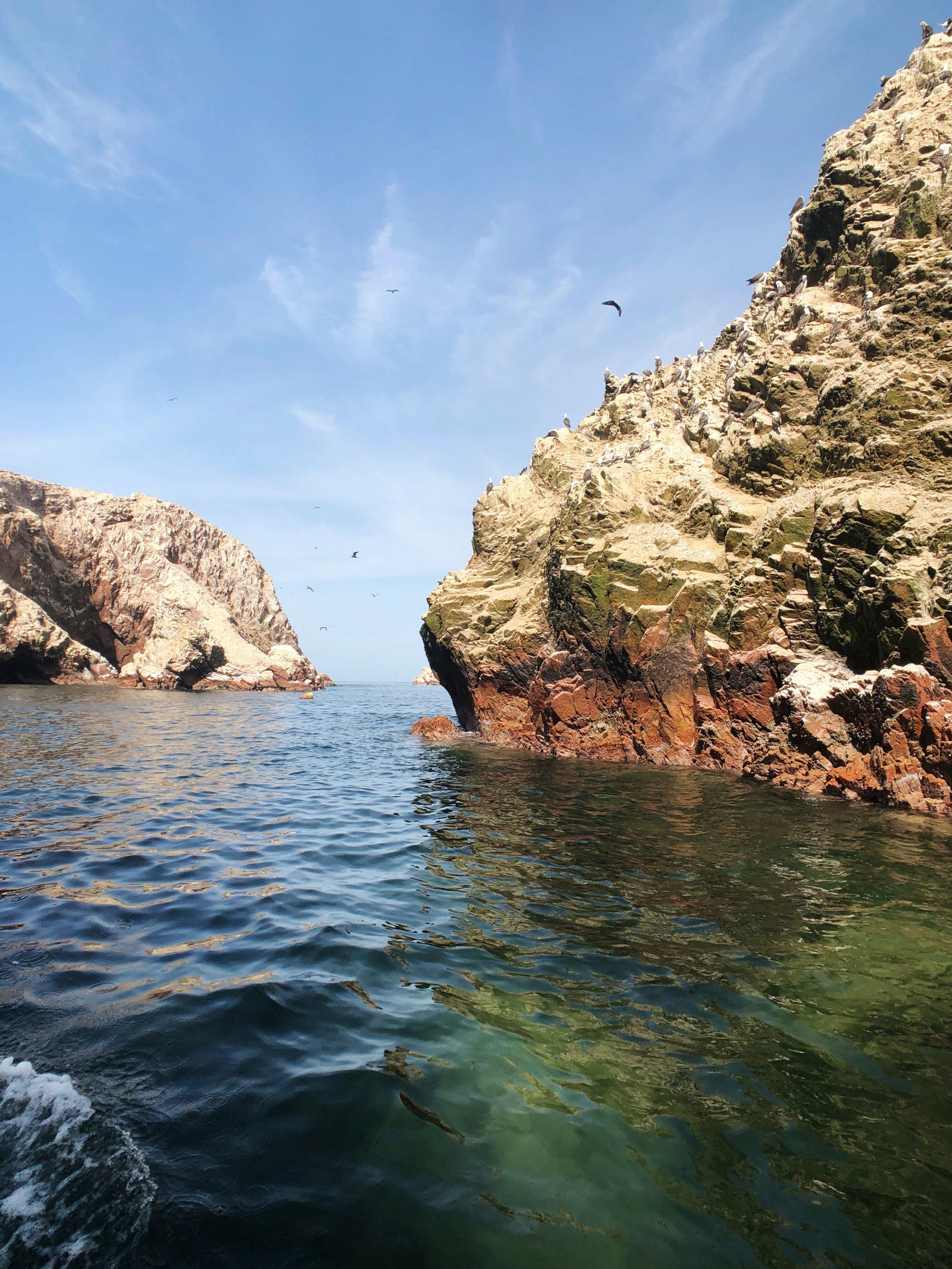 Ballestas Islands - paracas-peru - travel -tips - boat - south america - 3