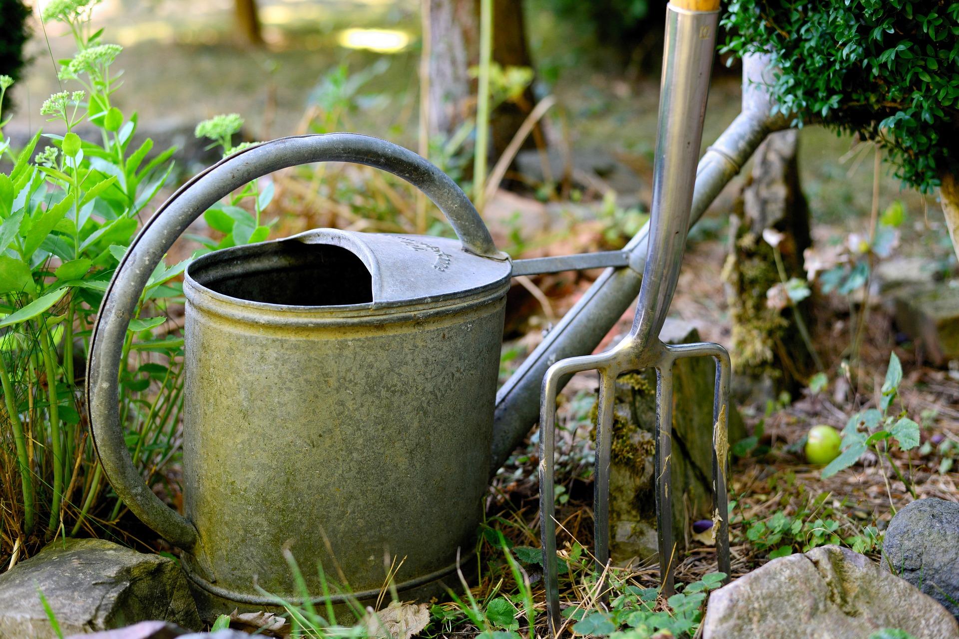 watering-can-3630281_1920.jpg