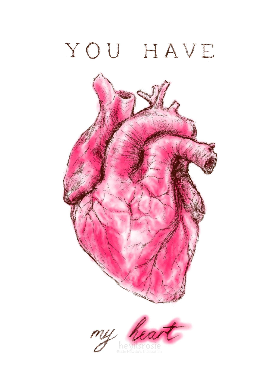 Anatomy Valentine - Heart