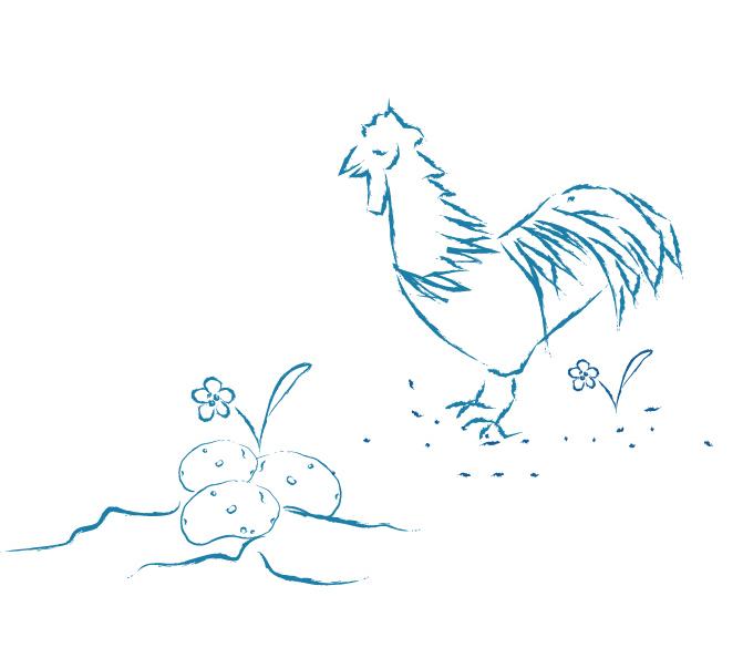 New Bison website kids chicken potato.jpg