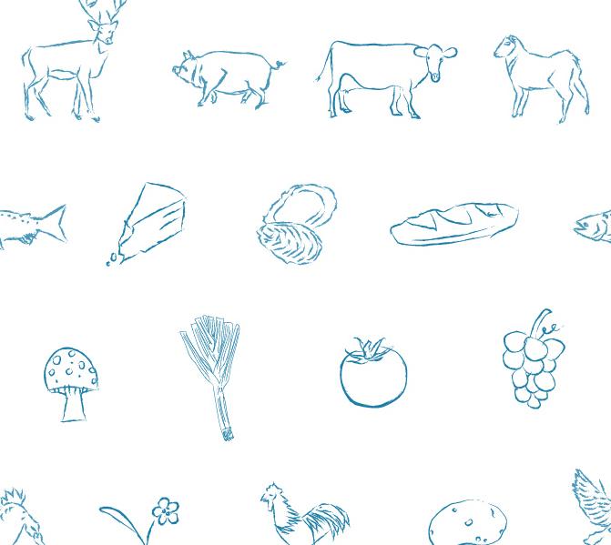 New Bison website kids wallpaper.jpg