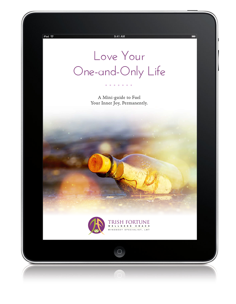 Fuel Your Inner Joy - Your life is too precious to turn the key to your happiness over to someone else. This is your one-and-only life. Choose to live from a place of joy; and see the goodness in everything. I'll show you how.Sign up for my newsletter and receive your free 28-day guide to fuel your inner joy permanently.