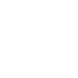 SwordSouls_ConnectLogos_PressKit.png