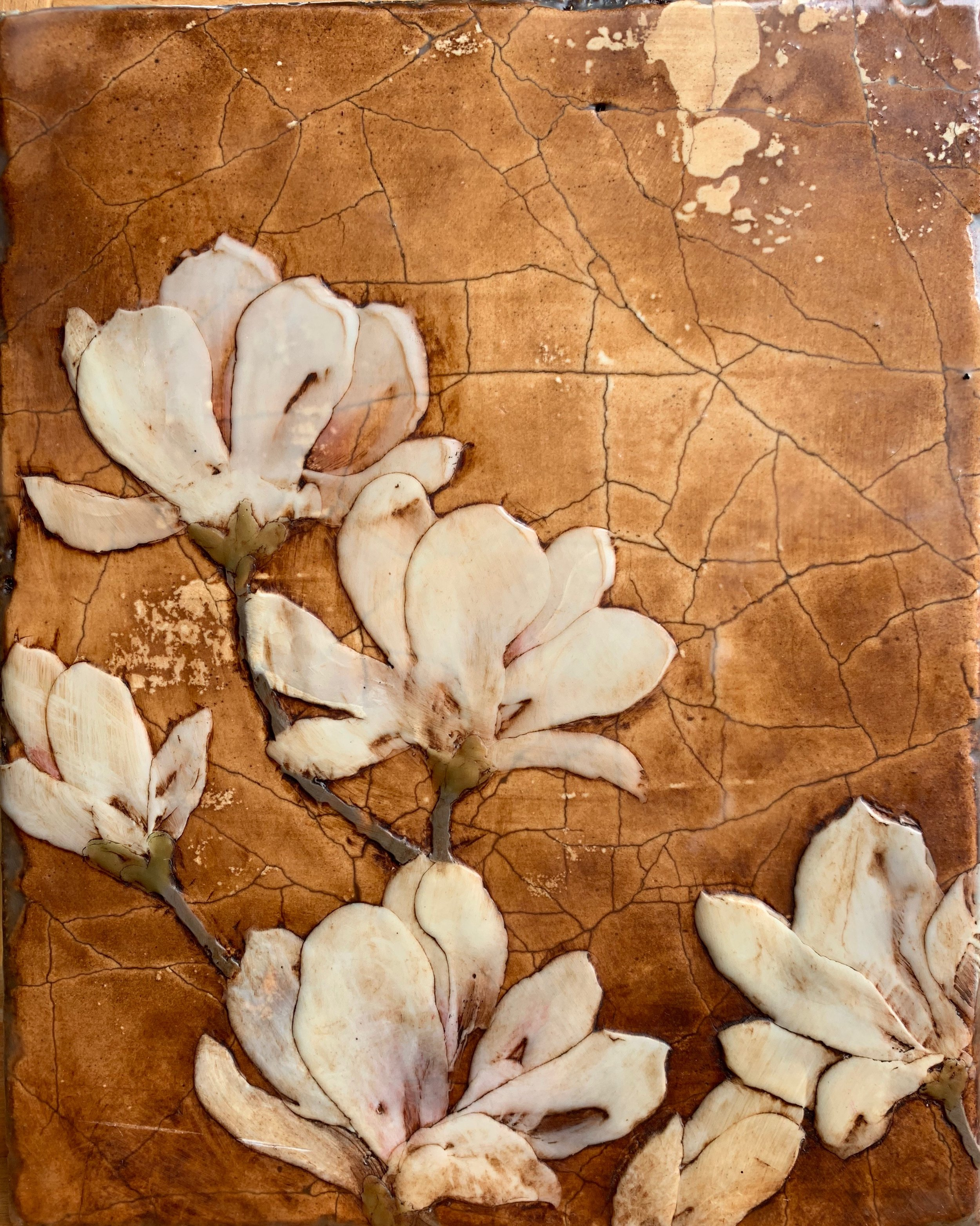 Early Spring Magnolia