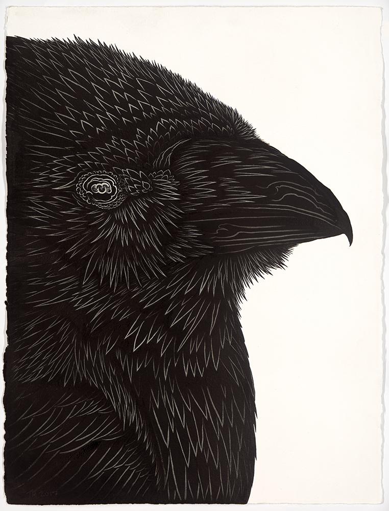 Hooper-BW-Raven.jpg