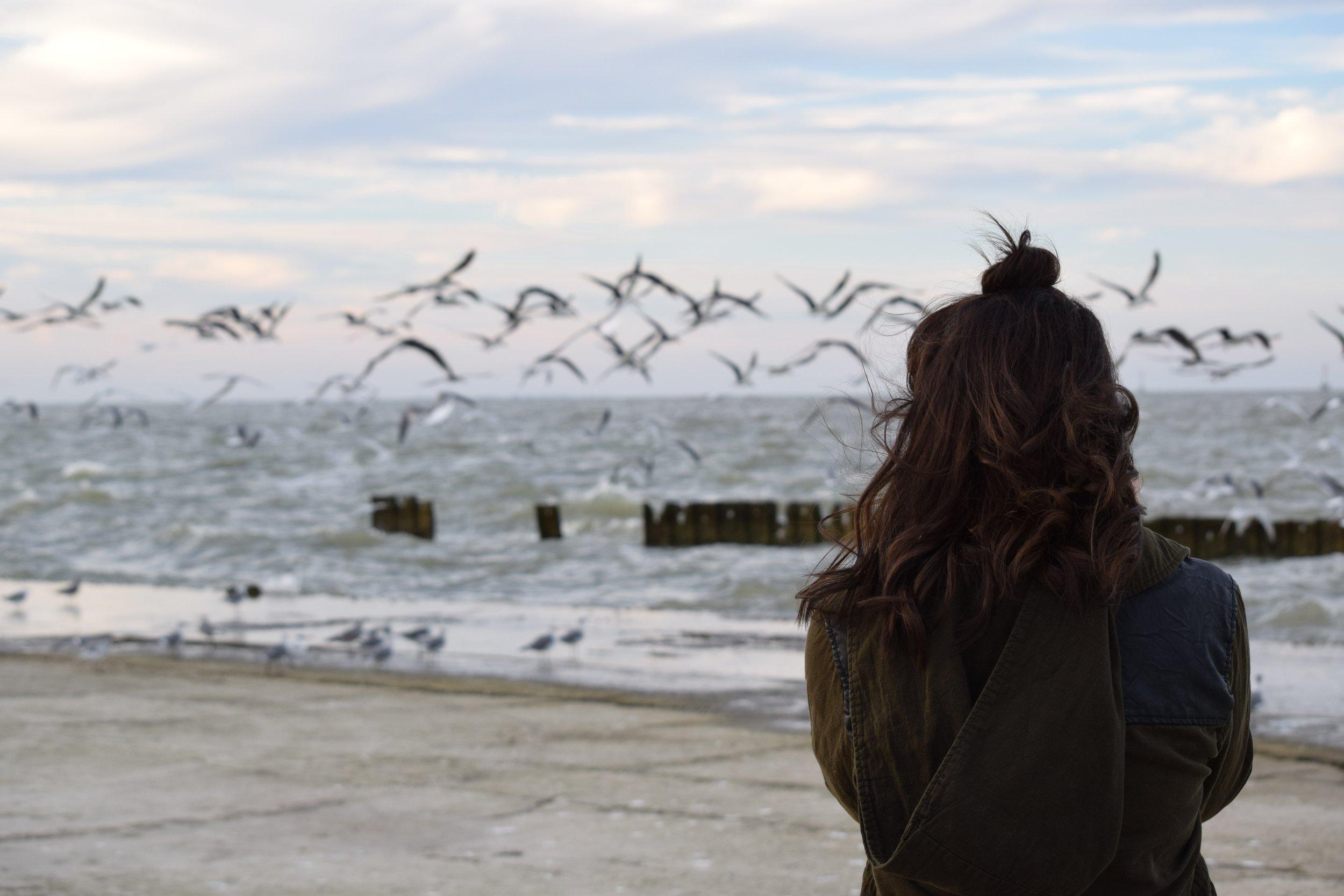 Woman & Ocean (Posted 9-13-19).jpg