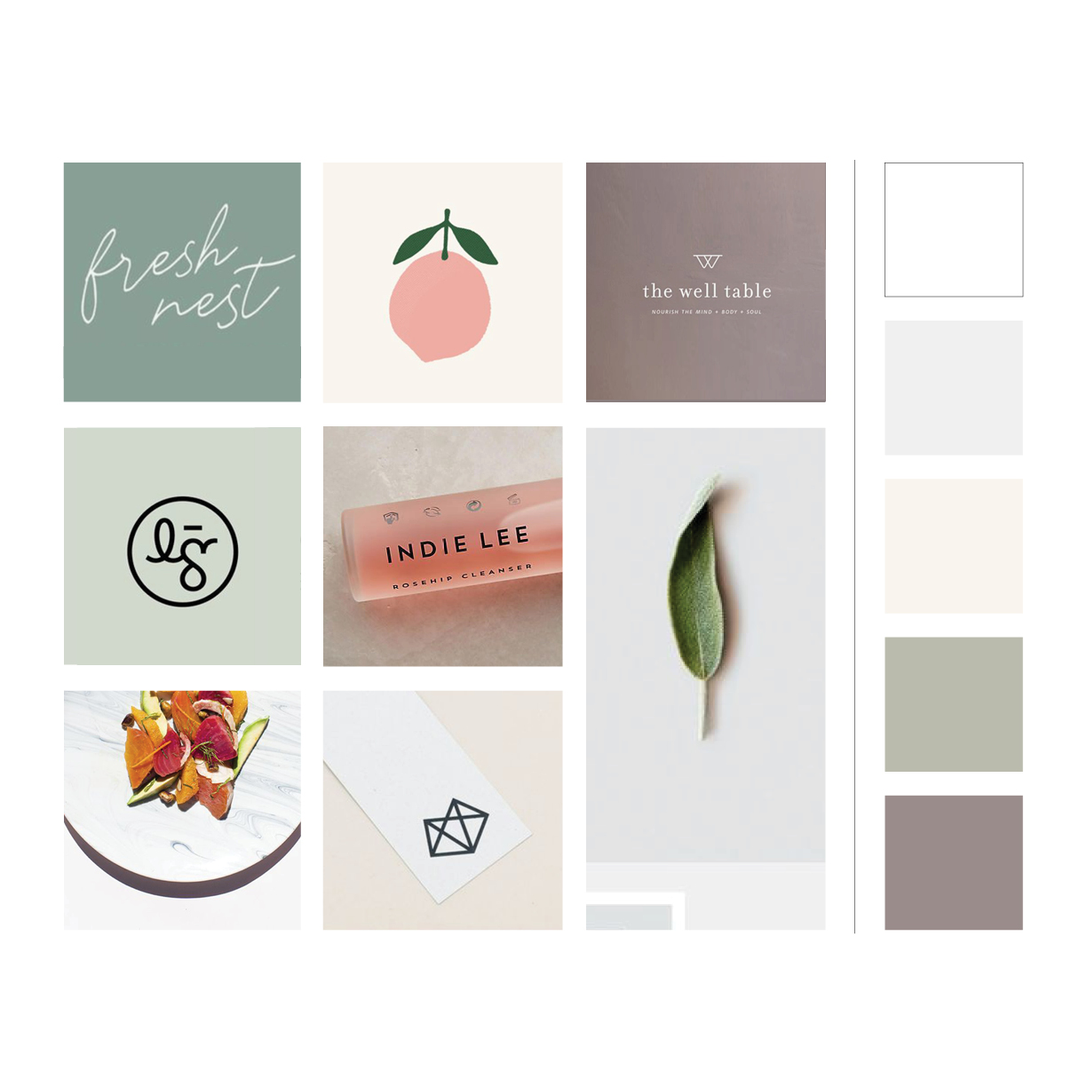 Moodboard & colour palette for well+nourished