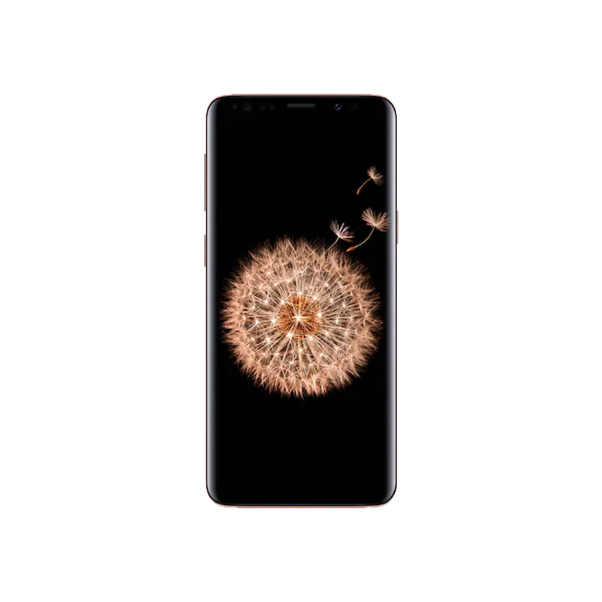 Samsung S9 | $299 + tax