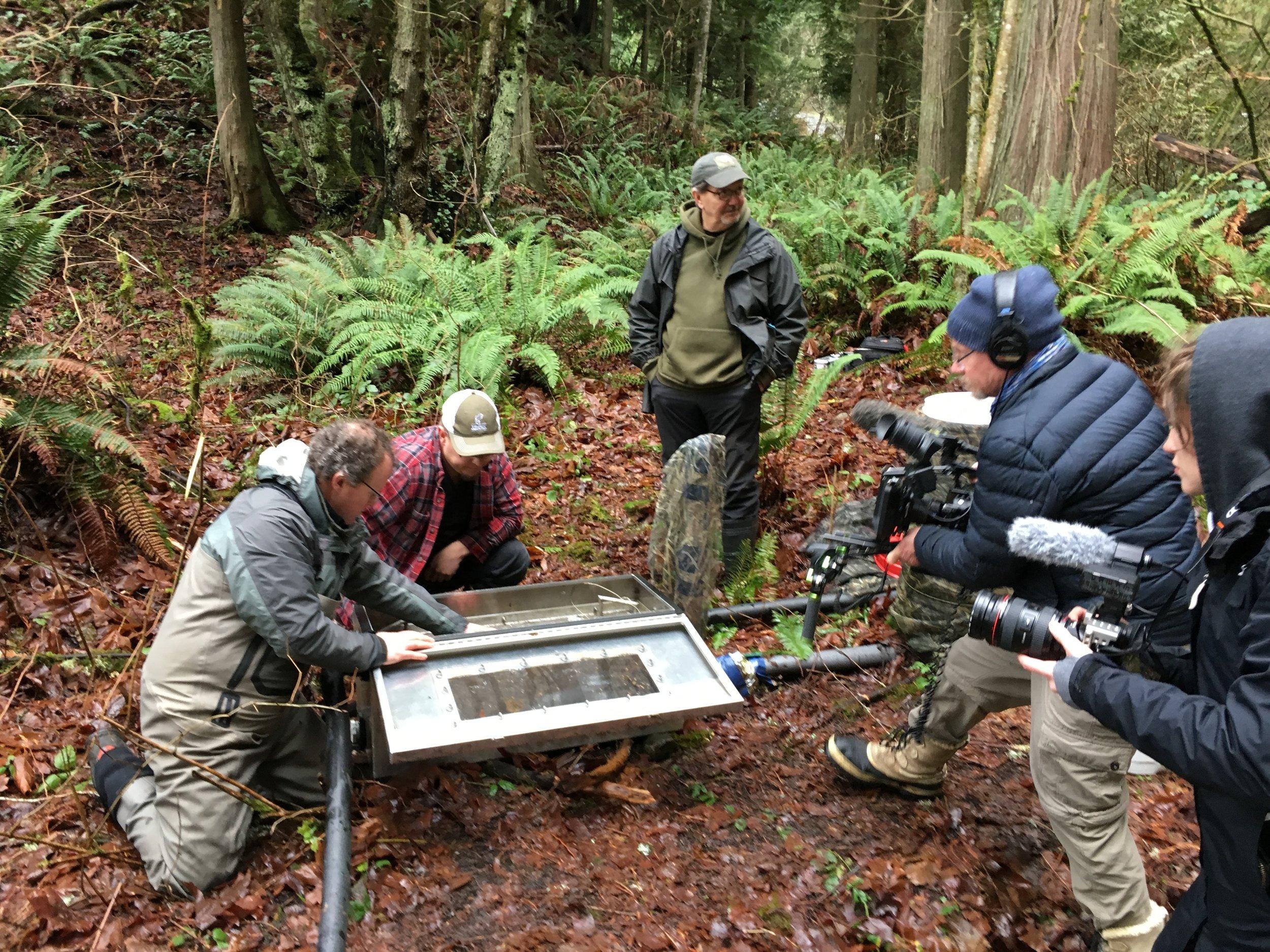 Marc and Editor Zoe Furlong capture kokanee eggs being placed in incubator