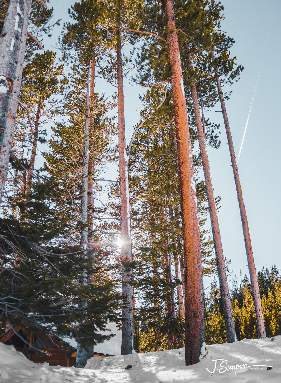 Colorado-Nature-Photographer-013.jpg