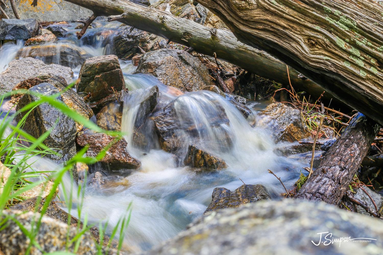 Nature-Photographer-Colorado-010.jpg