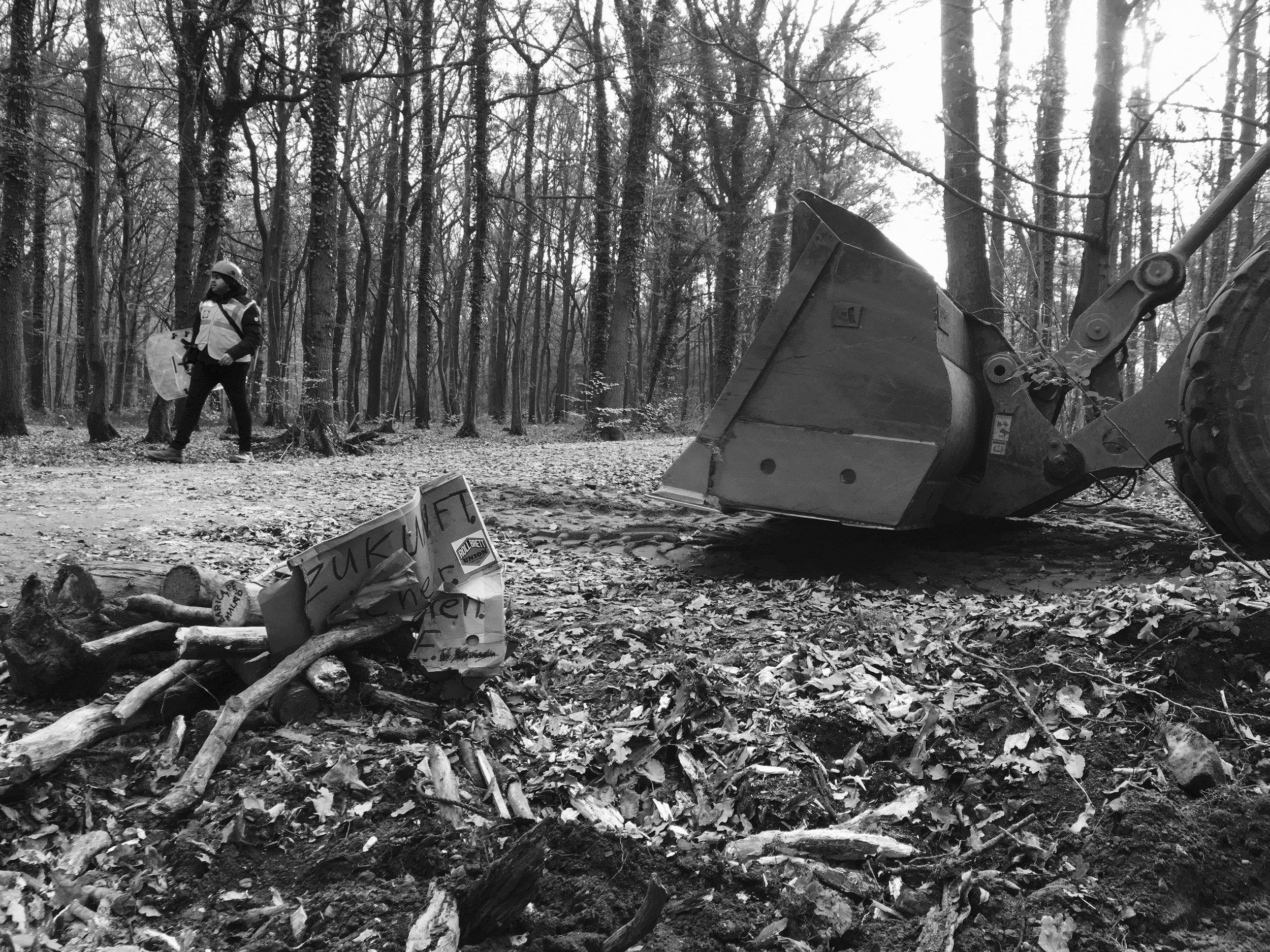 Déboisement des structures du sol dans la forêt de Hambach par les ouvriers de RWE le 22 novembre. Les actions périodiques de la police se sont poursuivies dans la forêt alors que l'occupation se poursuivait après les manifestations d'octobre. Un mémorial pour Steffen Meyn a été détruit ce jour-là.
