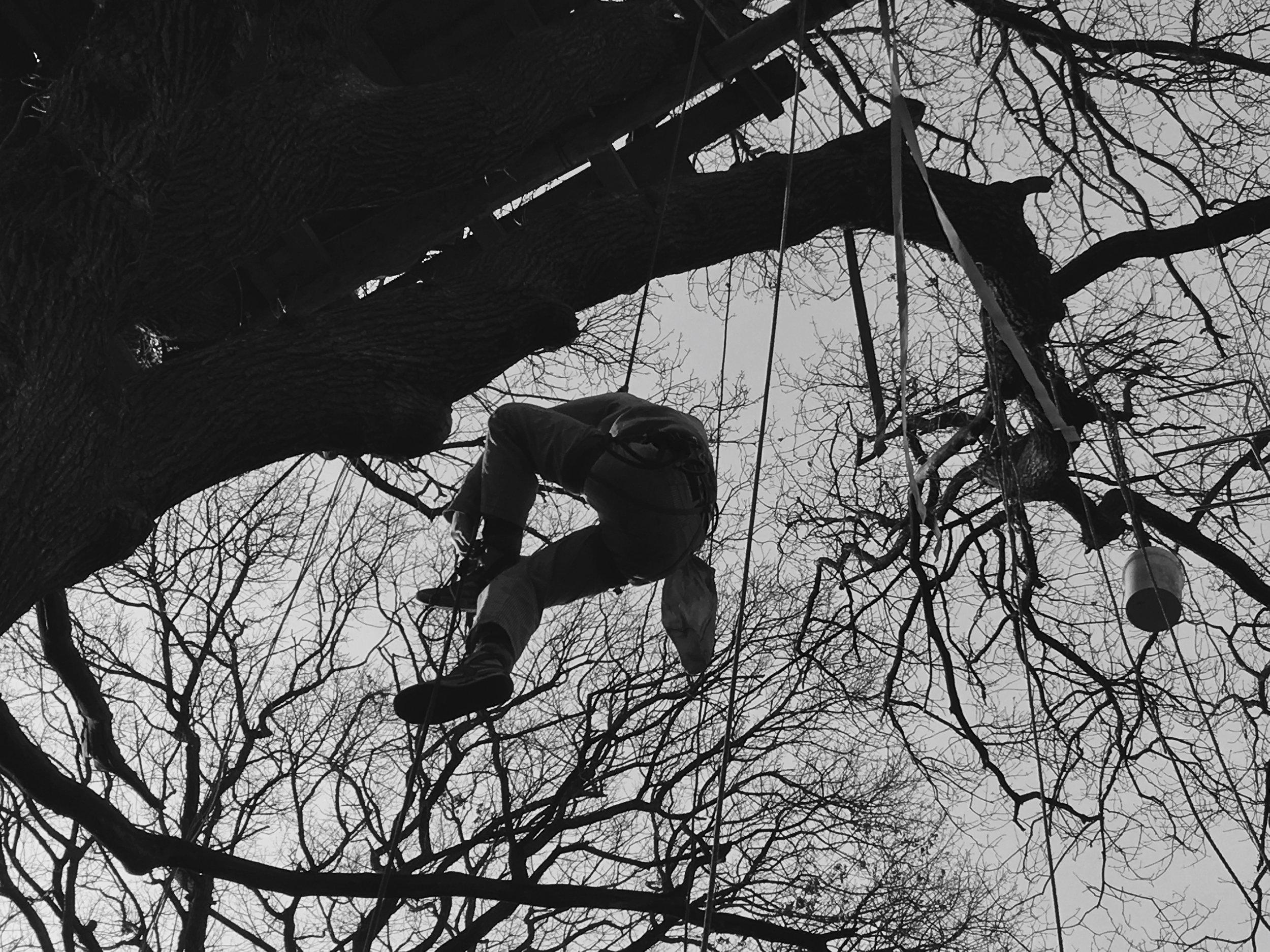 Les activistes sont restés dans la forêt après l'annonce de la Commission du charbon. Dans l'est de l'Allemagne, quatre excavatrices ont été occupées pour arrêter temporairement l'extraction, plus de vingt personnes ont été arrêtés dont trois personnes restent emprisonnés.