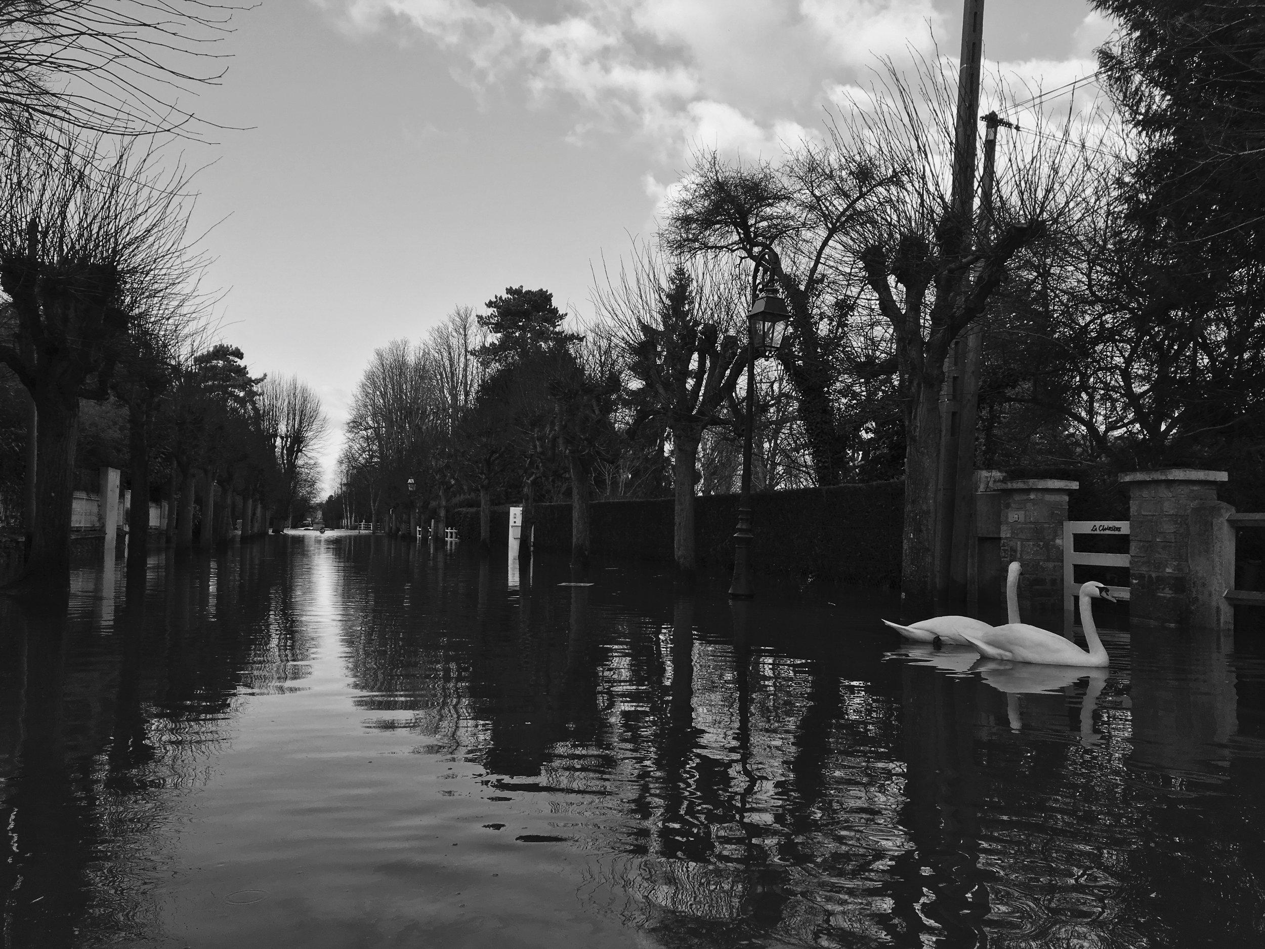 Scènes de la crue hivernale de la Seine à Villennes-sur-Seine, Yvelines le 4 février 2018. Tandis que les résidents ont trouvé des façons créatives pour s'adapter à la situation, les inondations ont causé des dégâts matériels importants dans la Vallée de la Seine.