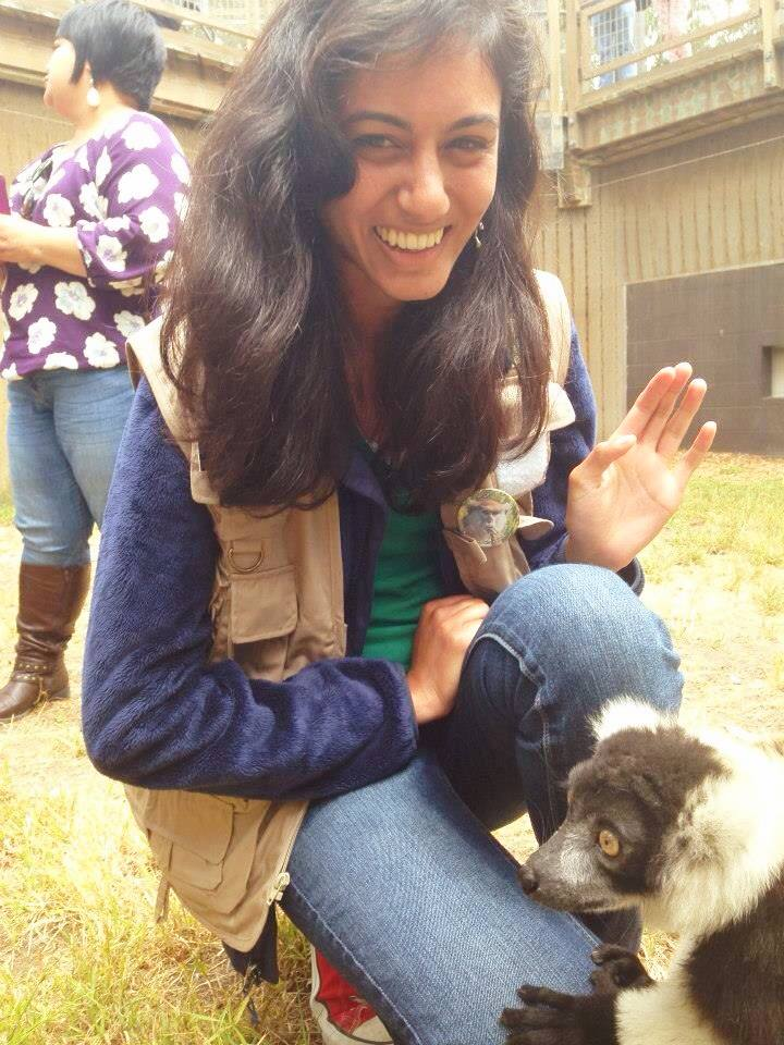 Meeting a black and white ruffed lemur at our SF Zoo Docent graduation!