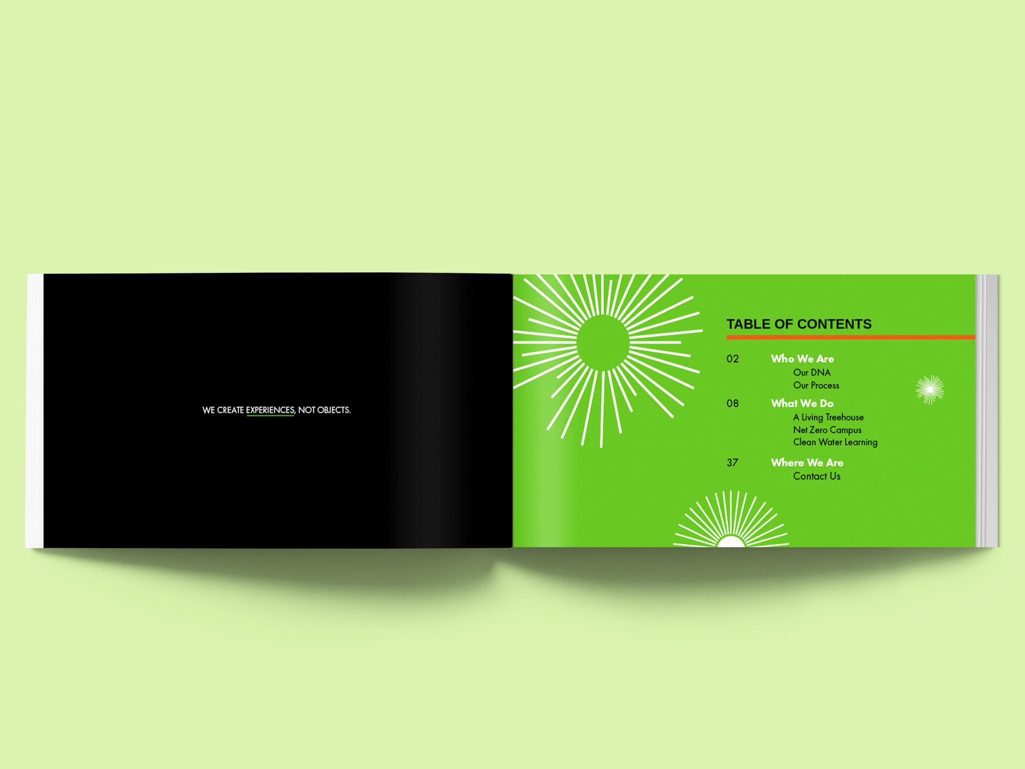 mithun_page4_green.jpg