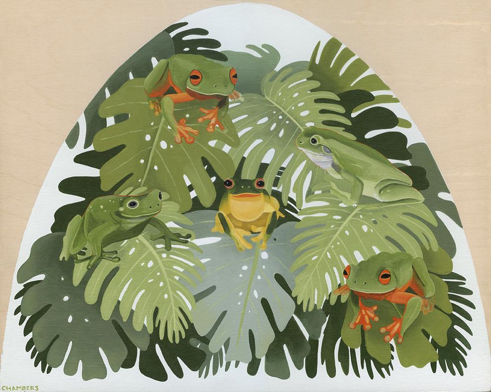 Chambers_Australian+Frogs_lr.jpg