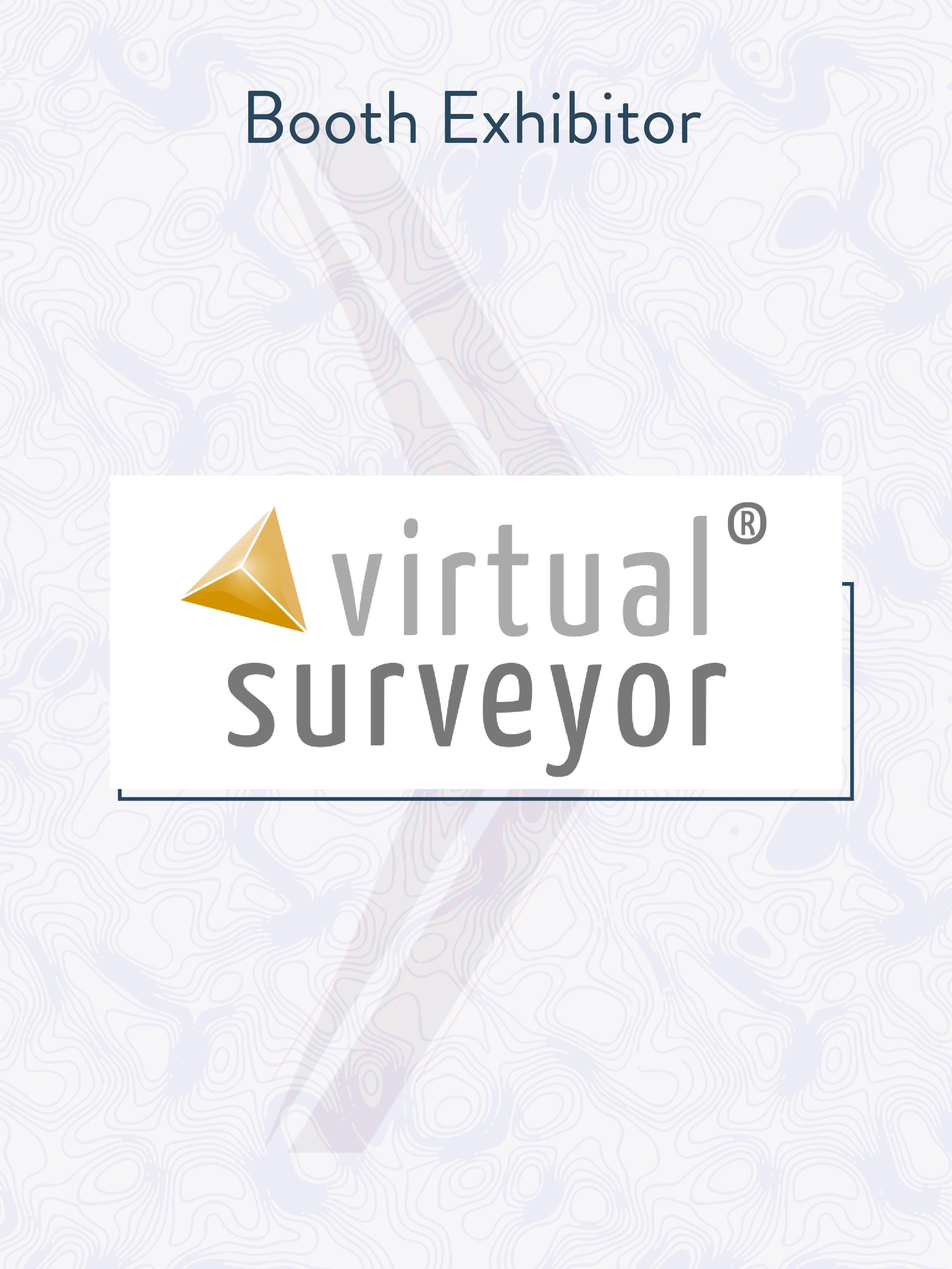 Virtual Surveyor.jpg