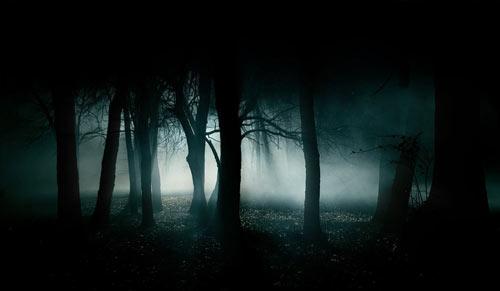 horror-woods50.jpg