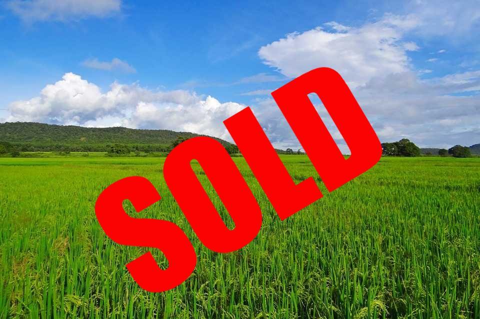 We Buy Land for Cash