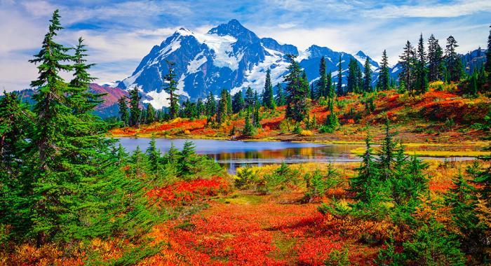 Sell Land in Washington State