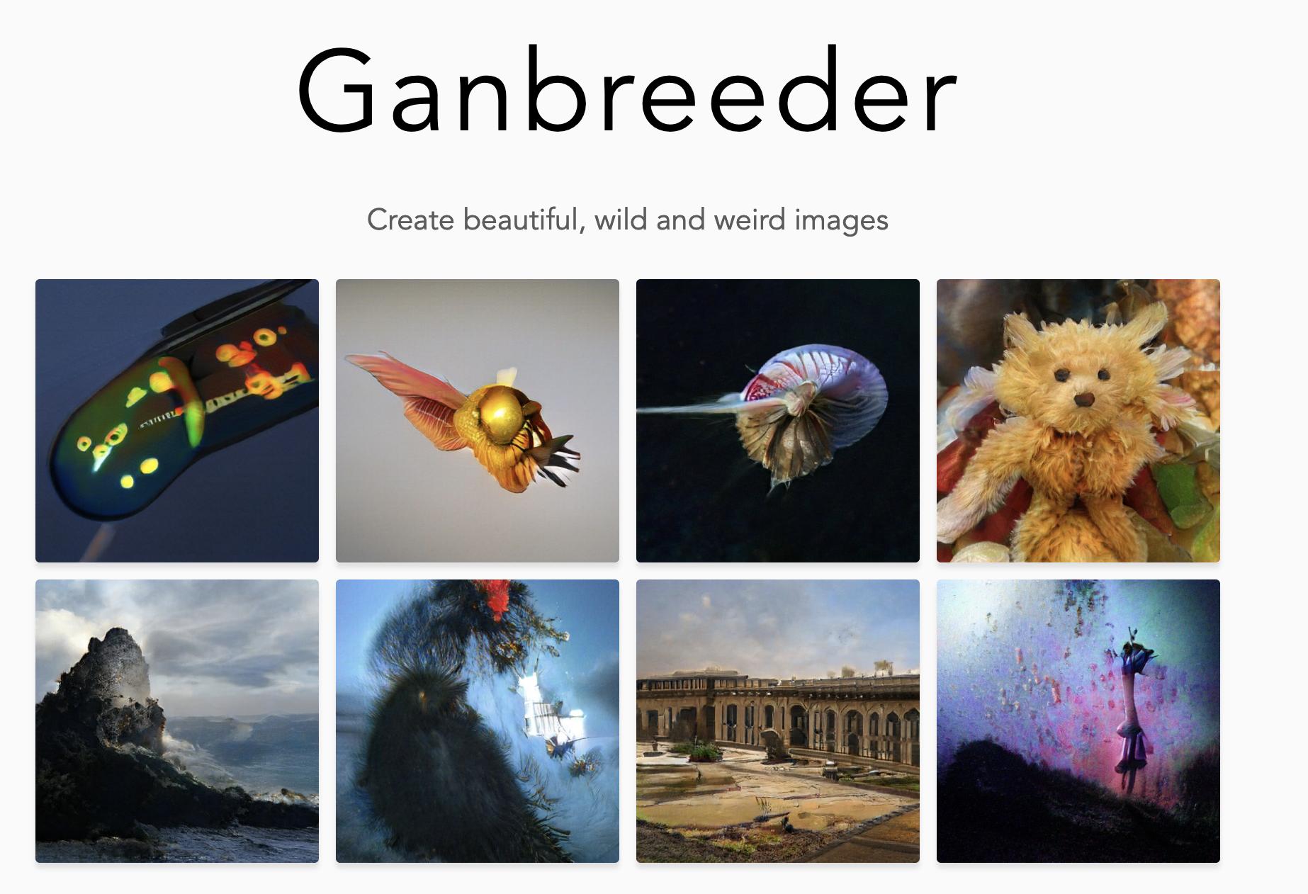 GanBreeder  link
