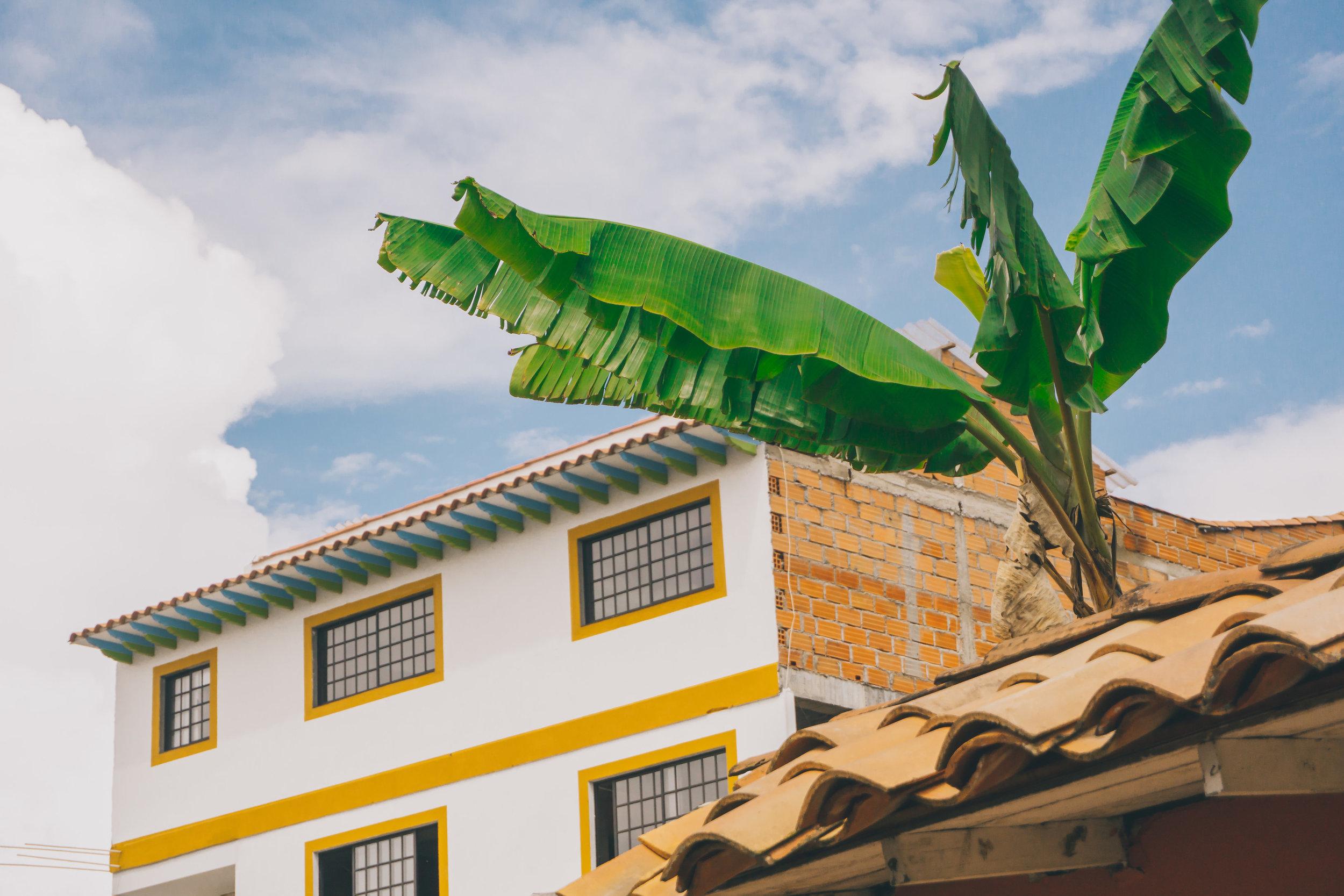 colombia-3173.jpg