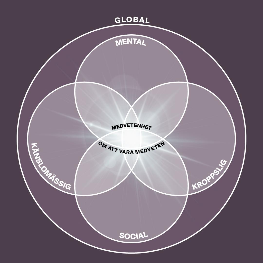 - Vi börjar resan genom att utveckla förmågan att särskilja innehållet i de Mentala, Kroppsliga och Känslomässiga domänerna. Med insiktsmeditation utforskar vi deras orsakssamband - så att de kan integreras i medvetandet.Vi inkluderar även de Sociala och Globala domänerna - för positiv påverkan på våra relationer, organisationer, samhällen och planeten.Att vila i att vara medveten om att vara medveten har kallats den högsta nivån av meditation. Tillgång till detta varande möjliggör en mer kärleksfull relation till sig själv, till andra människor och till världen i stort.