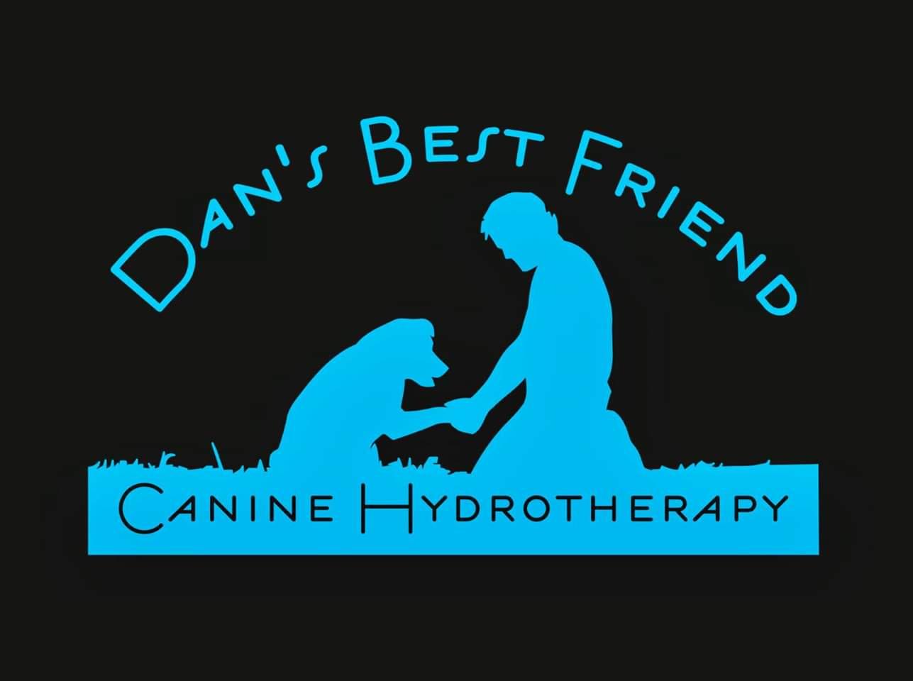 dansbestfriend_logo.jpeg
