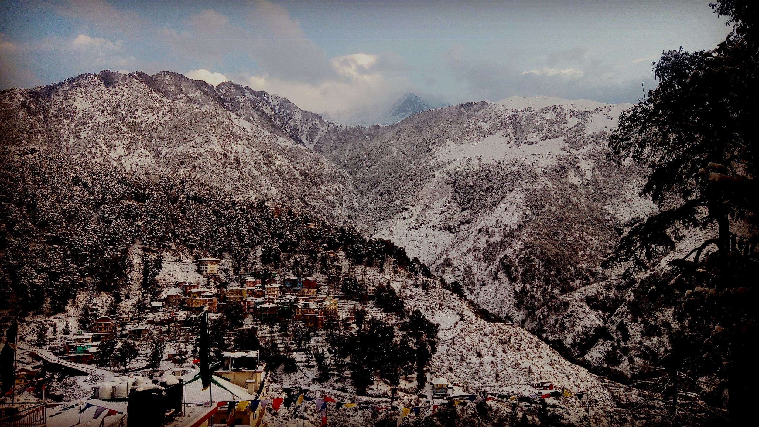 Tibetan Immersion - Immerse yourself in Tibetan language in the foothills of the Himalayas!