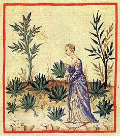 c506afc0d90fc9a333335e6920af0b99--medieval-hair-art-medieval.jpg