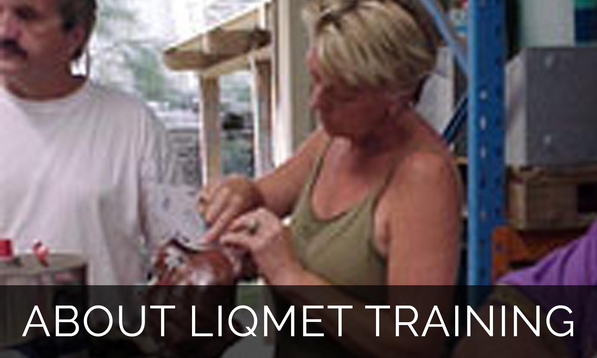 liqmet-training.jpg