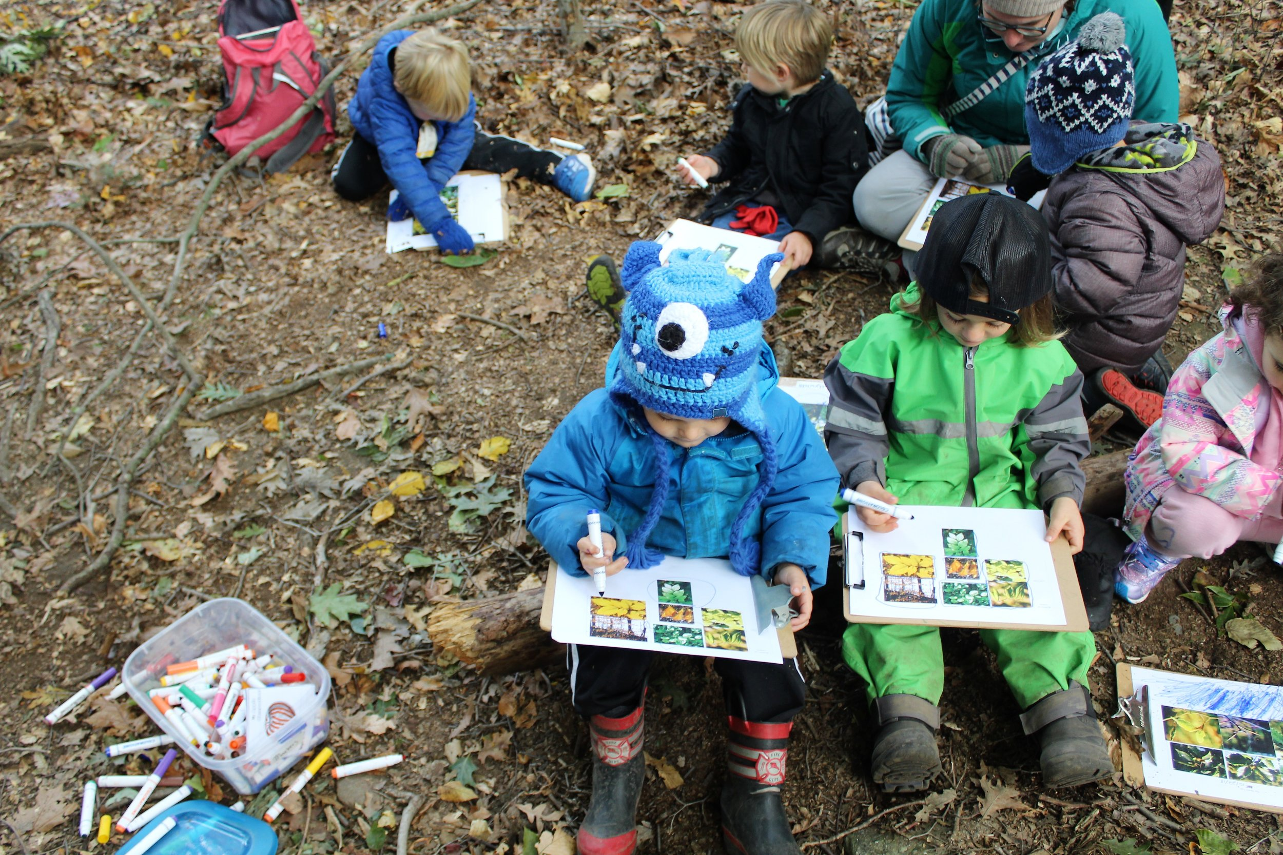 One of our Forest Preschool classes working with their teacher to log their weekly phenology observations.