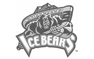 IceBears-gray.jpg